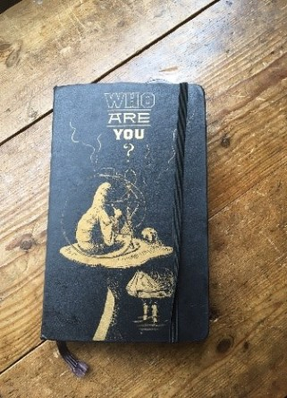 alice notebook1